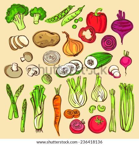 Assorted vegetable vector doodle set - stock vector