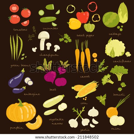 Assorted vegetable vector illustration. tomato, cucumber, pepper, cabbage, broccoli, cabbage, zucchini, eggplant, beans, peas, squash, garlic, onions, corn, beets, greens, carrots, mushrooms isolated - stock vector