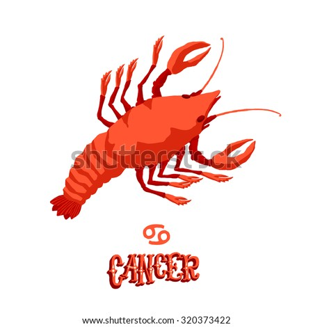 Astrological zodiac sign Cancer. Part of a set of horoscope signs. Isolated vector illustration on white background. - stock vector