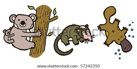 australian animals koala possum platypus - stock vector