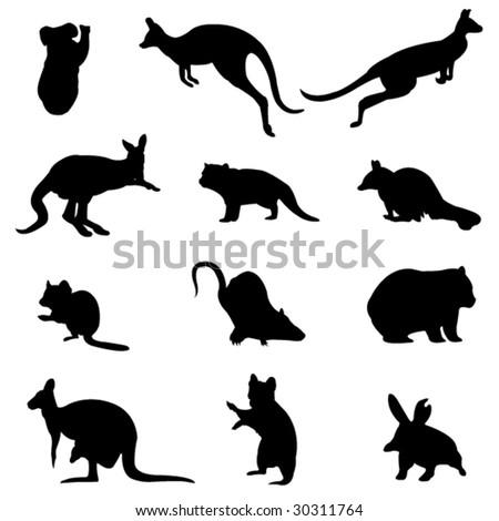 Australian marsupial animals - stock vector