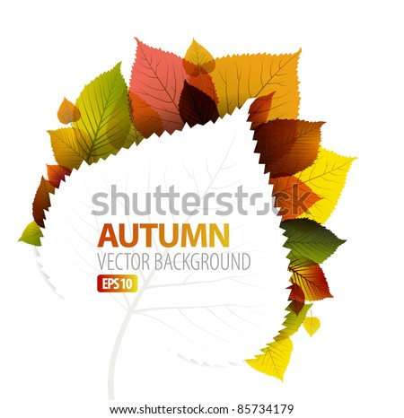 Autumn abstract floral background with place for your text - stock vector