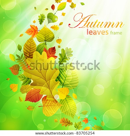 Autumn background with colorful leaves and place for text. Vector illustration. Check my portfolio for raster version. - stock vector