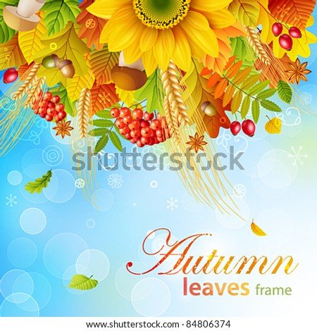 Autumn background with colorful leaves on sky background. Vector illustration. Check my portfolio for raster version. - stock vector