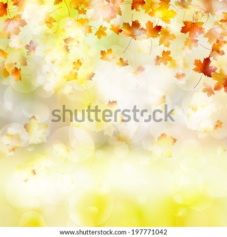 Autumn background with leaves. Back to school. And also includes EPS 10 vector - stock vector