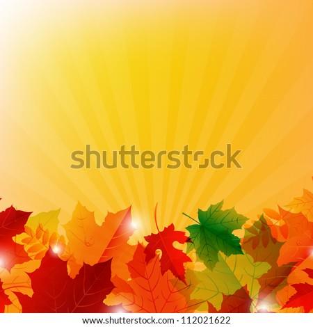Autumn Colorful Border With Sunburst, Vector Illustration - stock vector