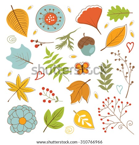 Autumn foliage set with twigs, flowers and leaves. vector illustration - stock vector