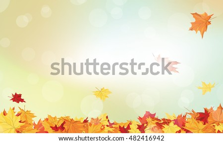 Autumn  Frame With Falling  Maple Leaves on Sky Background