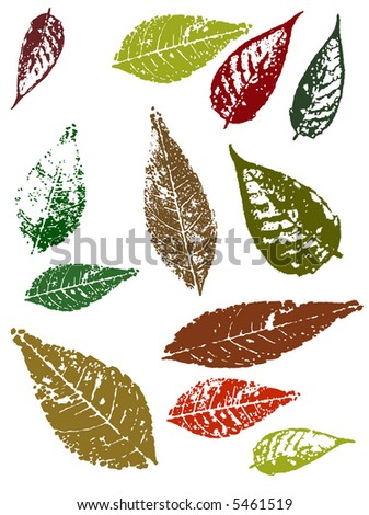 Autumn Grunged Leaves - stock vector