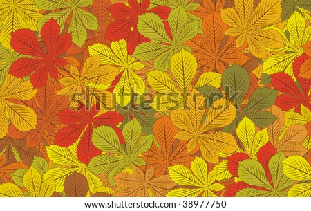 Autumn horse-chestnut leaves vector background