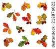 Autumn icon set. Fall leaves and berries. Nature symbol vector collection isolated on white background.  - stock vector