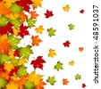 Autumn leaves, background - stock vector