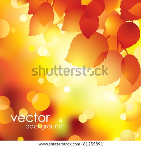 Autumn leaves background.Vector. - stock vector