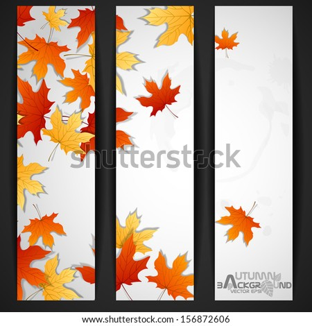 Autumn Leaves Background. Vector Illustration. Eps 10.