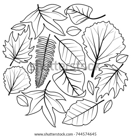 Autumn Leaves Black White Coloring Book Stock Vector 744574645 ...
