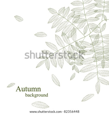Autumn leaves monochrome isolated on white background (vector version eps 8) - stock vector