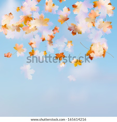 Autumn leaves on the sky background. And also includes EPS 10 vector
