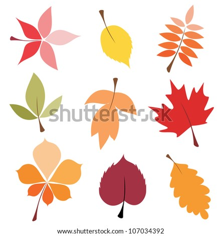 autumn leaves set, isolated vector illustration - stock vector