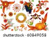 Autumn nature elements set - stock vector