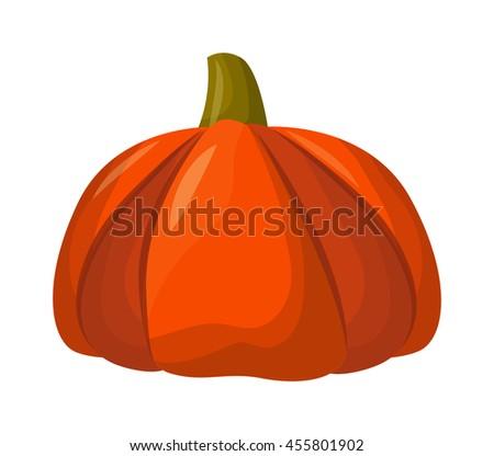 Autumn pumpkin vegetable design. Pumpkin oriental bittersweet vector illustration. Orange halloween pumpkin vegetable collection. Harvest symbol season decoration. - stock vector