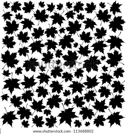 Autumn Set of Black Maple Leaves on White Background, Vector Version - stock vector