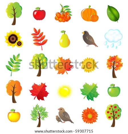 Autumn Symbols And Elements, Isolated On White Background, Vector Illustration