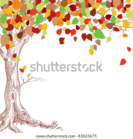 Autumn tree background - stock vector