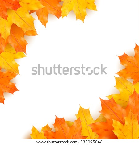 Autumn vector background with realistic maples leaves isolated on white background