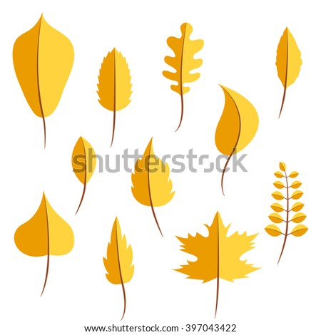 Autumn yellow withered leaves in flat style vector set. Oak leaf, chestnut leaf, maple, birch and acacia leaves. - stock vector