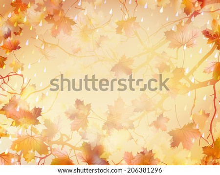 Autumnal Background with maple leaves.  - stock vector