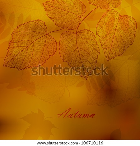 Autumnal background with your text (vector eps 10) - stock vector