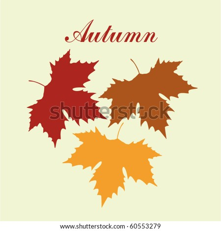autumnal maple leaf background - stock vector