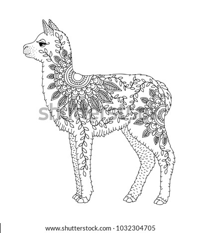 Baby Alpaca Hand Drawn Llama Adult Stock Vector HD Royalty Free