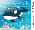 Baby Killer Whale. Funny cartoon and vector illustration. Isolated character - stock vector