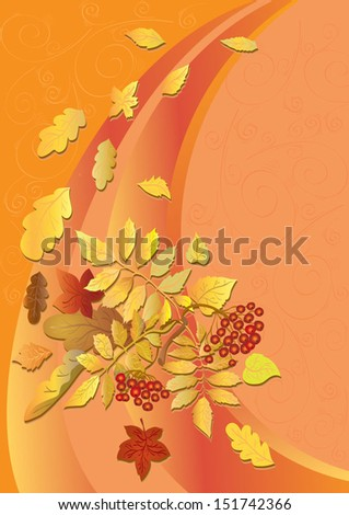 background orange with autumn leaves and wild ash