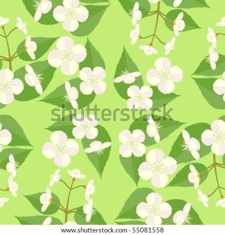 Background with a sprig of jasmine