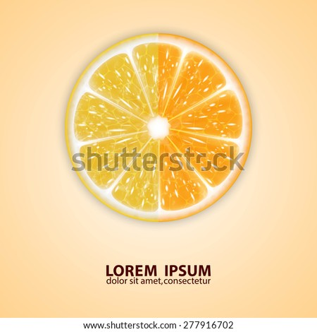 Background with citrus fruits. Orange and lemon. High quality vector. EPS10 vector
