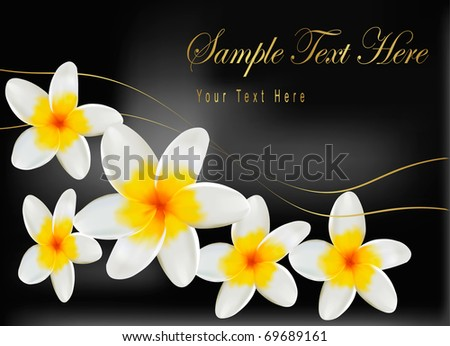 Background with frangipani flowers. Vector illustration. - stock vector