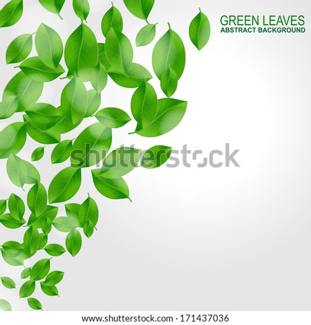 Background with fresh green leaves - stock vector