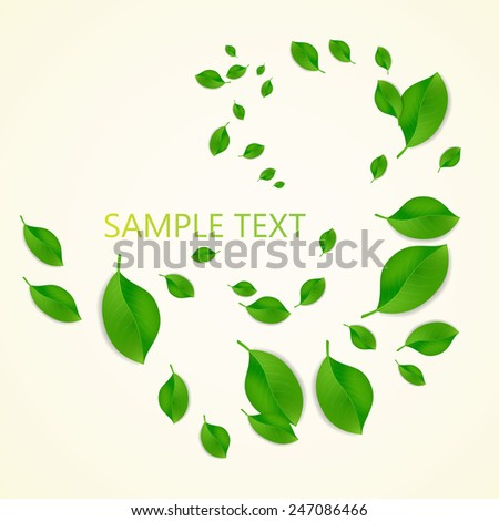 Background with green fresh leaves and place for your text. Vector illustration. - stock vector