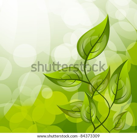 Background with leaves - stock vector