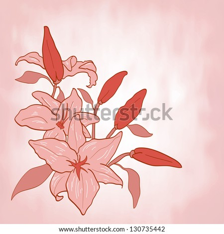 background with pink flower lily Invitation or greeting card Vector illustration