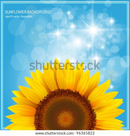 Background with sunflower over blue sky, vector. - stock vector