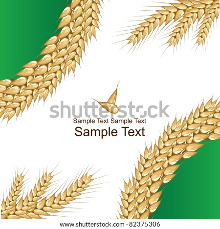 Background with wheat - stock vector