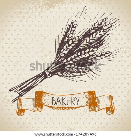 Bakery sketch background. Vintage hand drawn illustration of wheat - stock vector