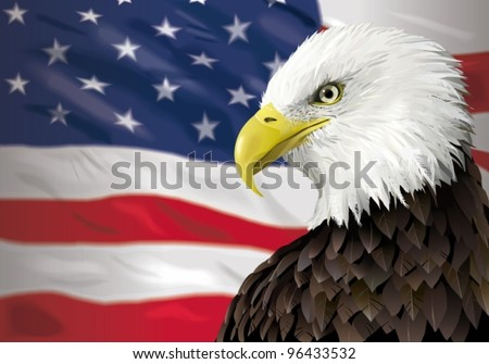 Bald Eagle and a US flag - stock vector