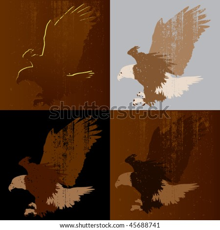 bald eagle landing, set of four options with grunge texture - stock vector