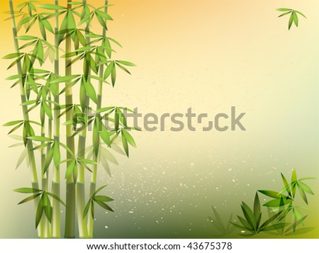 bamboo background EPS 10 - stock vector
