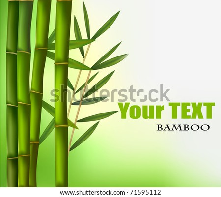 Bamboo background with copy space. Vector illustration. - stock vector