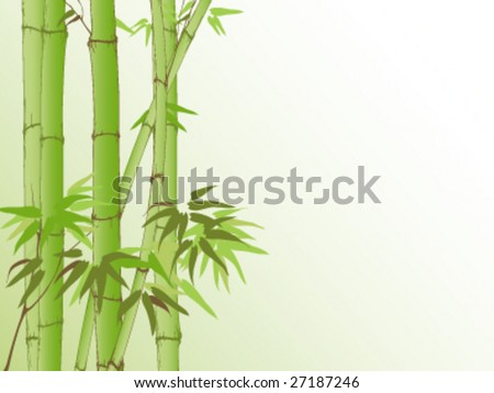 bamboo background with place for your text